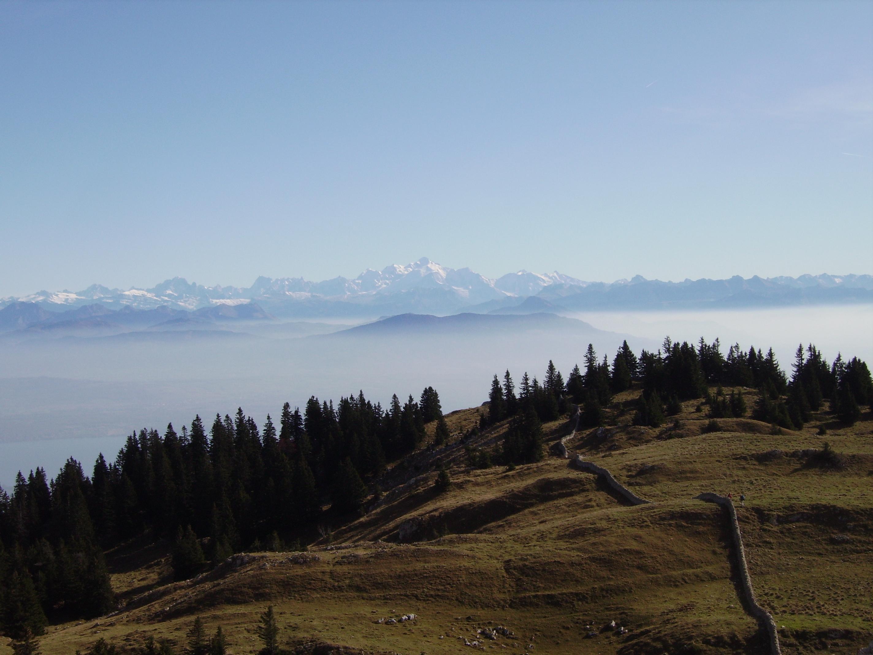 paysage typique depuis la Dole ,côté suisse