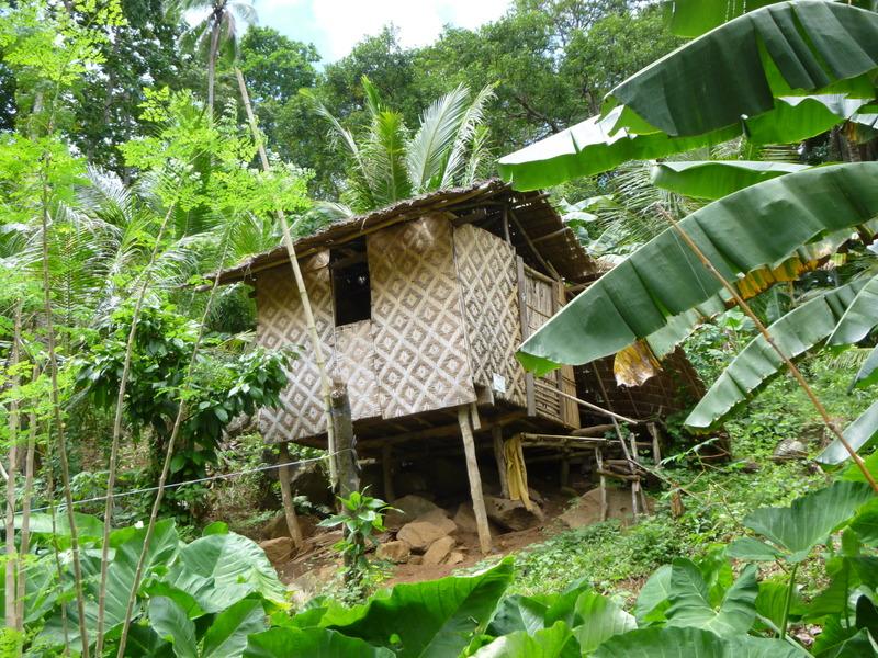 maison traditionnelle dans le sud de l'ile