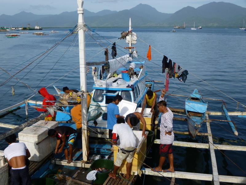 scène de pêcheurs à Puerto Princessa