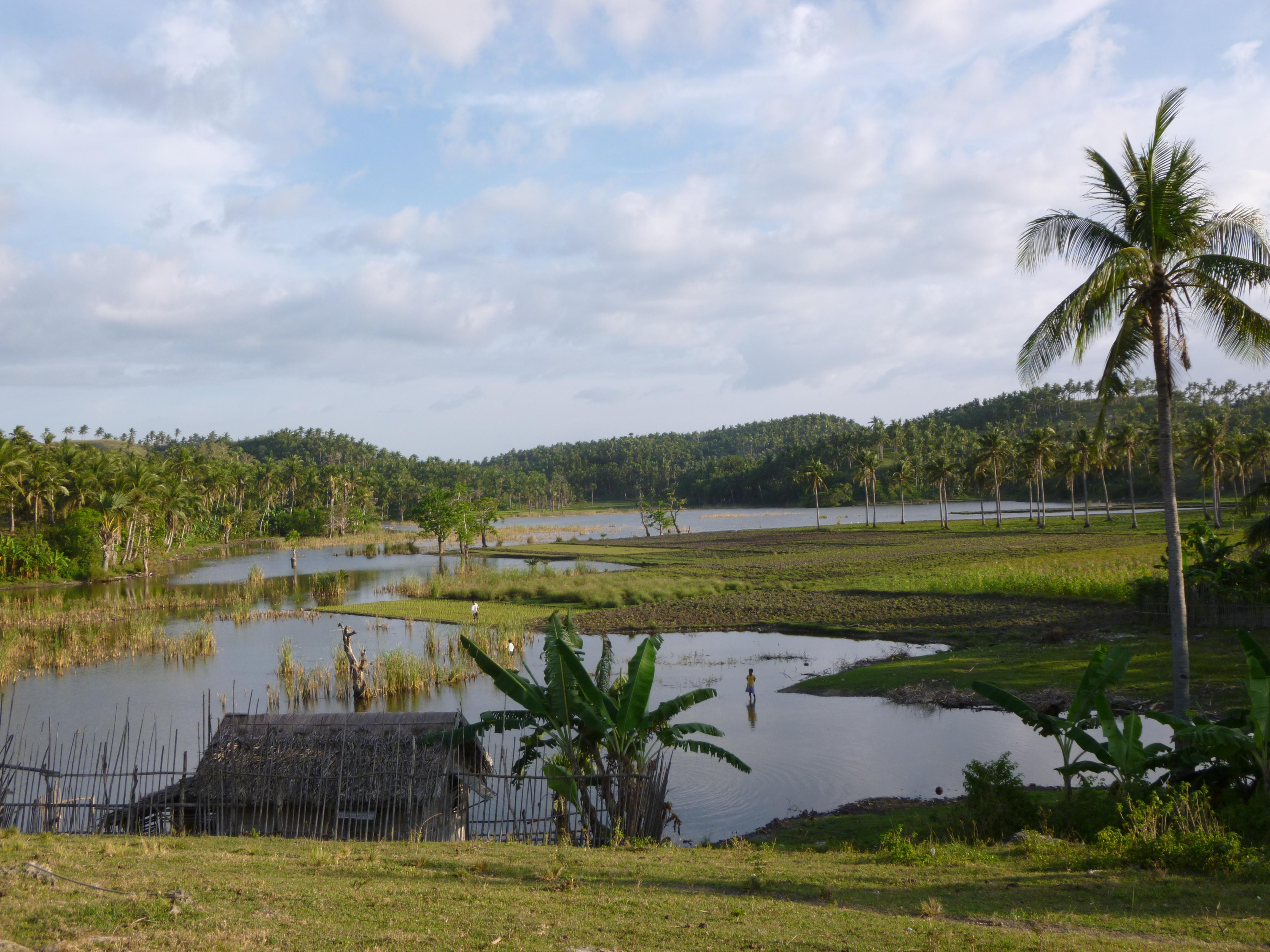 la campagne de Virjen island