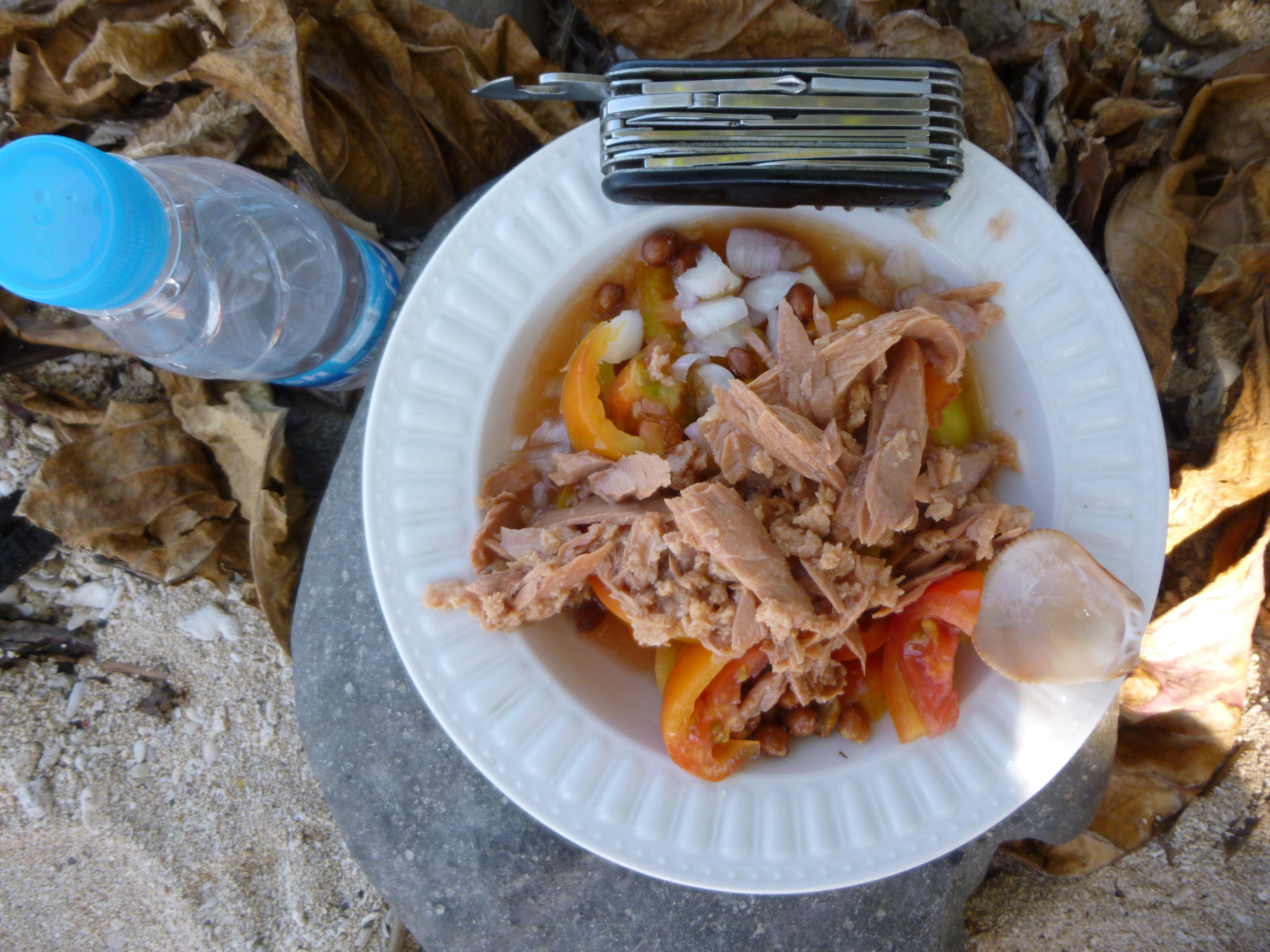 notre repas, l'assiette et le couteau victorinox sont des prets